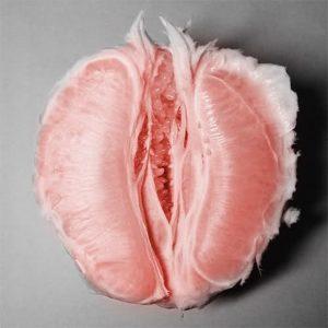 fruit_vagina