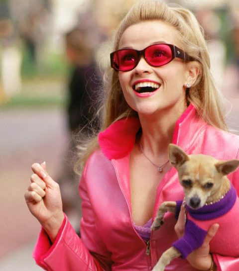 8 levenslessen uit Legally Blonde