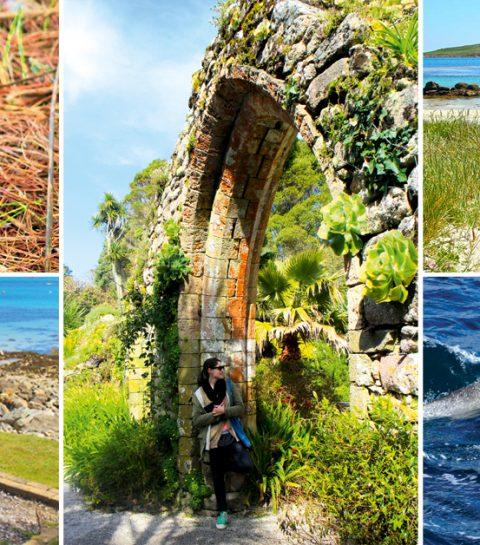 Welkom op de Scilly Islands, de Caraïben van het Verenigd Koninkrijk