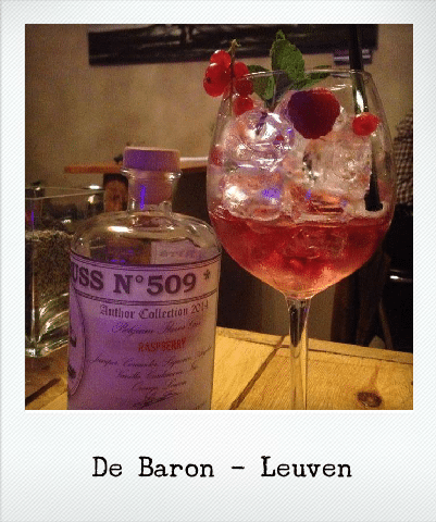 Gin Tonic lovers: allen naar De Baron in Leuven