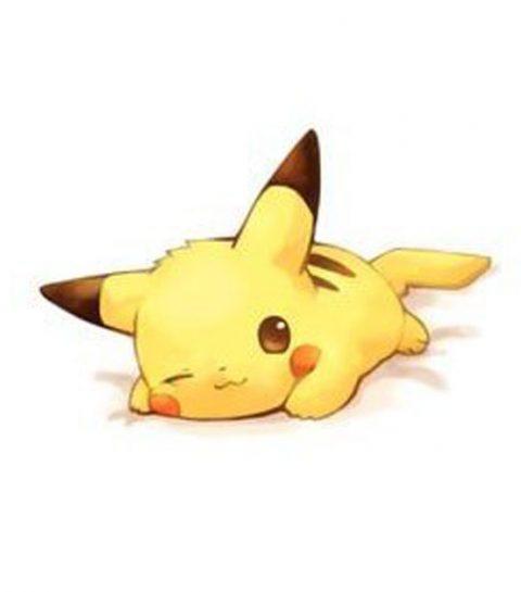 Laat alles vallen: er bestaan Pokemon baby's