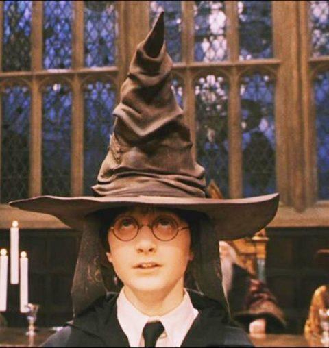 Deze Harry Potter bruisbal onthult in welk Zweinstein huis je thuishoort
