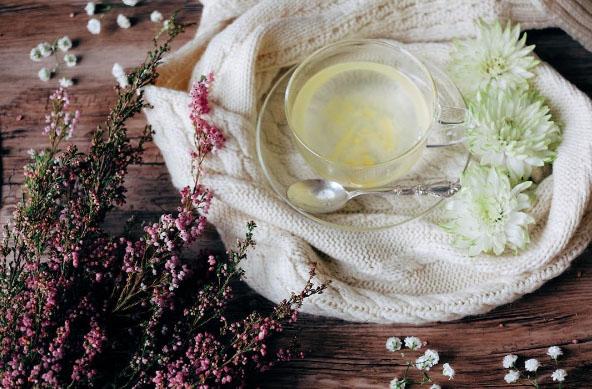 gezondheid lichaam thee feiten fictie