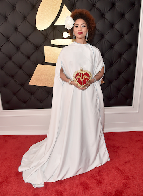 Grammy Awards 2017 Joy Villa Trump make america great again 1
