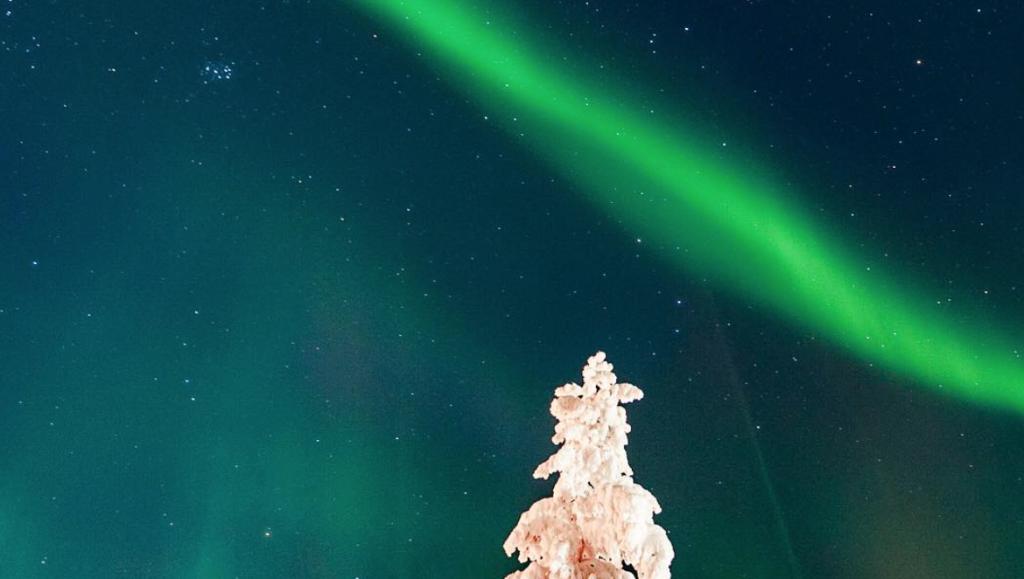 noorderlicht zweden