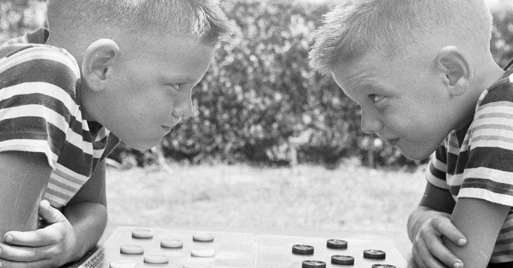 20_feiten_tweeling_schaak