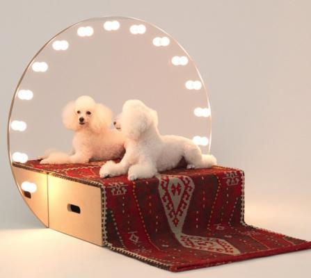 hondenhokken dogs dogchitecture