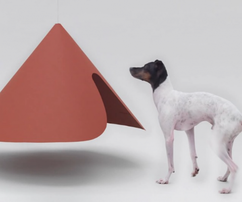 hondenhokken dogchitecture honden