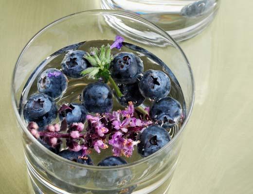 Fruitwater receptjes bosbes lavendel