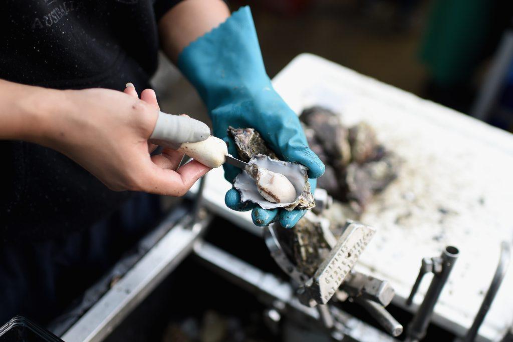 oesters openen oesters plukken