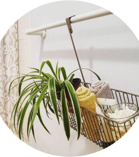 Dit is waarom je planten in je badkamer moet houden