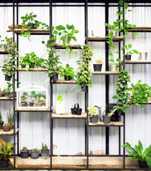 Dit zijn de beste urban farms van Brussel