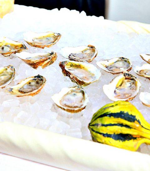 Trending: zelf verse oesters plukken
