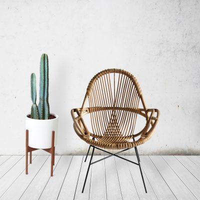 cactussen_interieur_huis_pinspiration