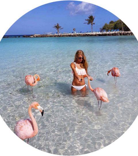 Op dit tropische eiland kan je zwemmen tussen de flamingo's