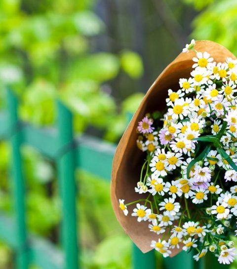 To do: leg eens een boeketje bloemen op straat