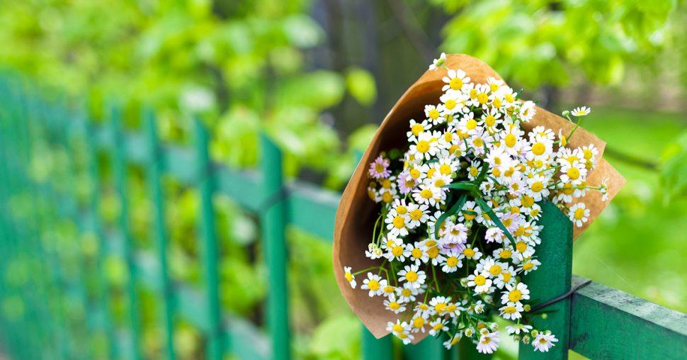 Dag-van-het-eenzame-boeket-bloemen