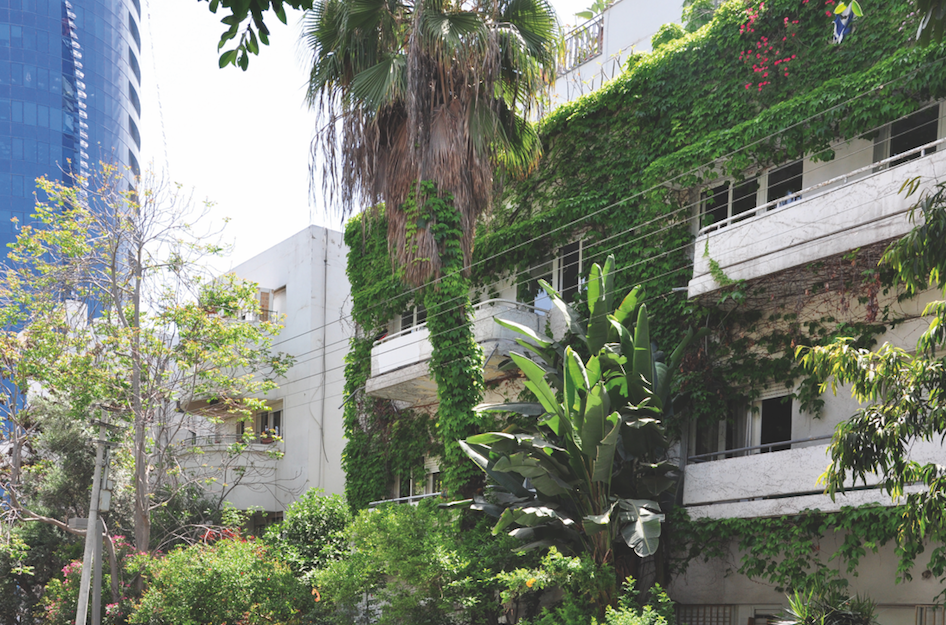 Tel Aviv,Bauhaus,architectuur,adressen,hotspots,citytrip