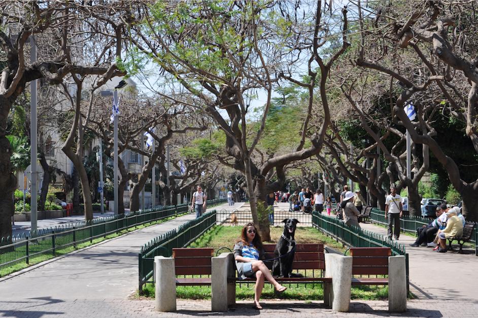 Tel Aviv,Rothschild Boulevard,park,kiosk,hotspots,citytrip