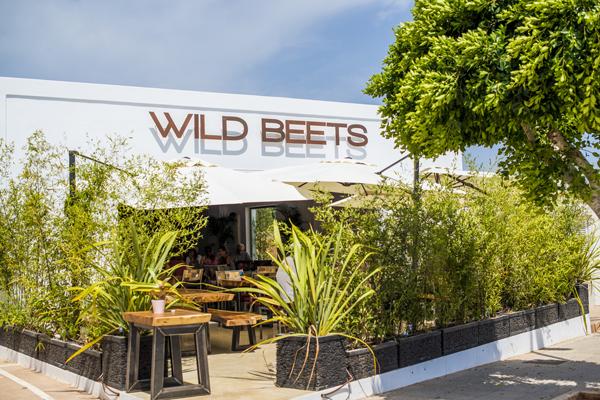 ibiza wild beets raw organic vegan