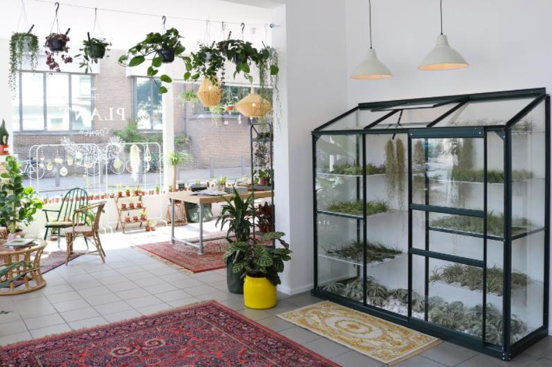 phyt_planten_antwerpen