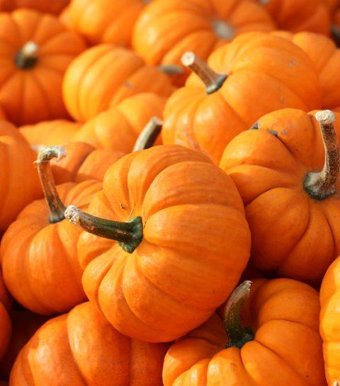 Deze beautyproducten met pompoen brengen je helemaal in de herfstsfeer