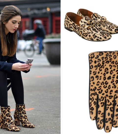 De 15 leukste luipaard accessoires