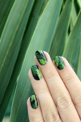 nagel 3