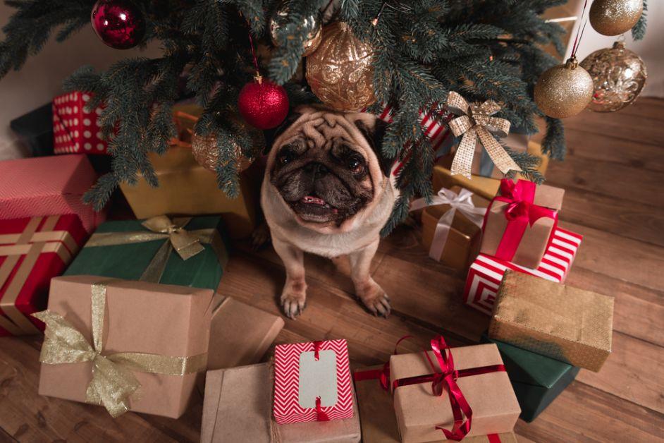 winter, gezellig, kerstmarkt, fashion, vakantie, kerst, geschenk, cadeau