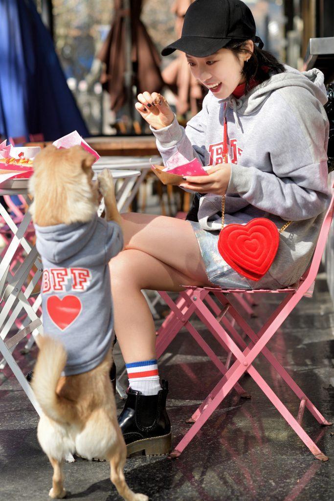 LOL: Monki lanceert een schattige hoodie....voor je hond - 1