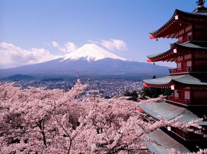 roze hotspots reizen Japan