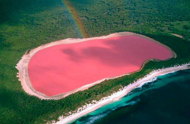 Lake Hillier Australië vakantiebestemming reizen