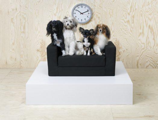 ikea lurvig katten honden meubels