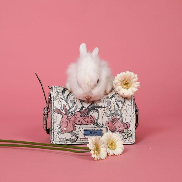 accessoire trend trends zomer shopping fashion millenial pink roze konijn bunny rabbit bloemen prada bag handtas tas