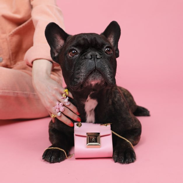 accessoires trend trends zomer shopping fashion millenial pink roze puppy french frenchie hond dog swarovski ring maxi bling mini tas handtas patrizia pepe