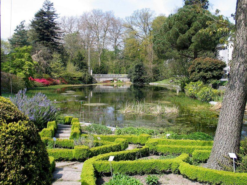 tuin, park, gent, zomer, hotspot