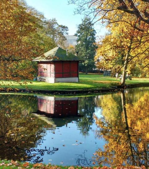 Summer hotspots: 5 geheime tuinen en parken in Gent