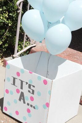 gender_reveal_party_13b