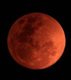 Weekend tip: ga kijken naar de bloedrode maansverduistering