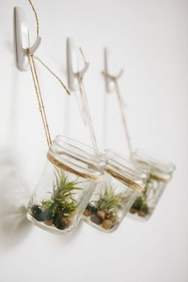 groen, planten, deco, interieur
