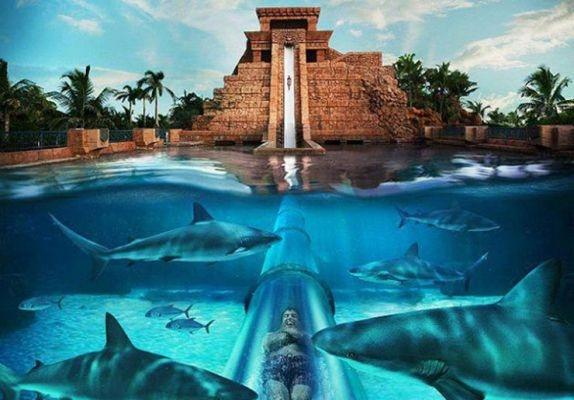 water, park, zomer, fun, reizen, travel, glijbaan, pretpark