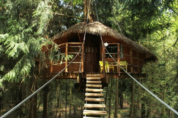 hotel, vakantie, reis, zomer, boomhut, treehouse, origineel, thailand, washington, firenze, australie