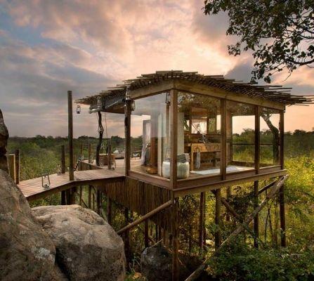 hotel, vakantie, reis, zomer, boomhut, treehouse, origineel, thailand, washington, firenze, australie, zuid-afrika, safari