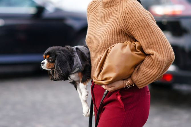 the pouch bottega veneta tassen trend designertas lente 2020