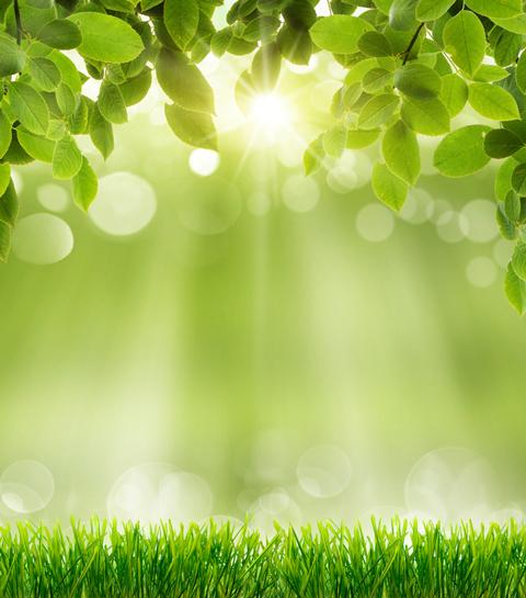 Cruelty free, organic, vegan… 10 populaire groene termen uitgelegd