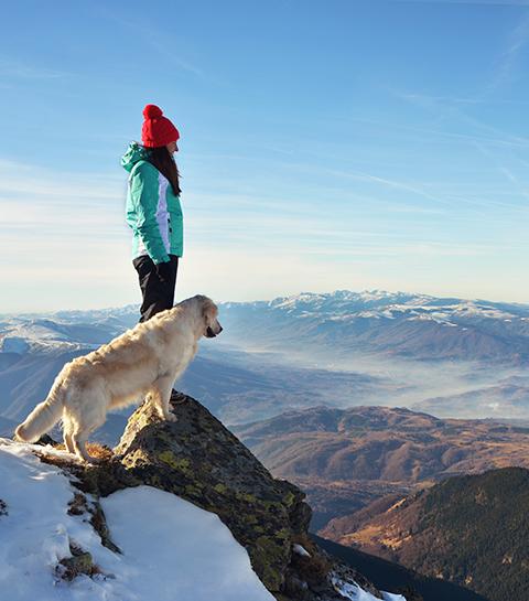 8 plekken om met je huisdier te verkennen