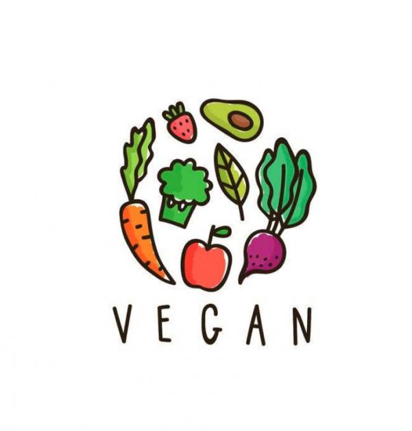 vegan chips antwerpen frituur