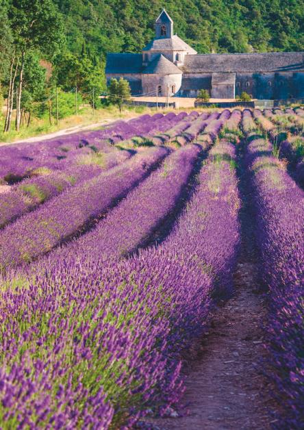 Van de Provence tot Japan: op reis in je badkamer - 5