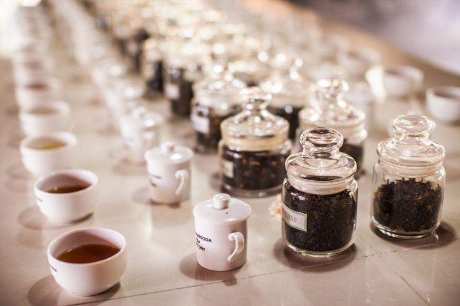 thee, soorten, oorsprong, bereiding, theemachine, oolong, degustatie, witte thee, blauwe thee