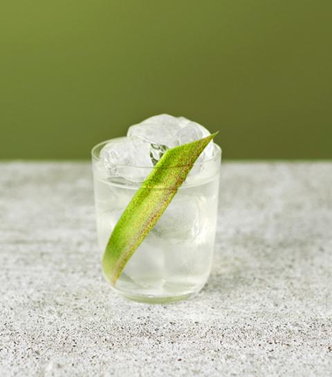 seedlip mocktail tournée minérale cocktail alcoholvrij